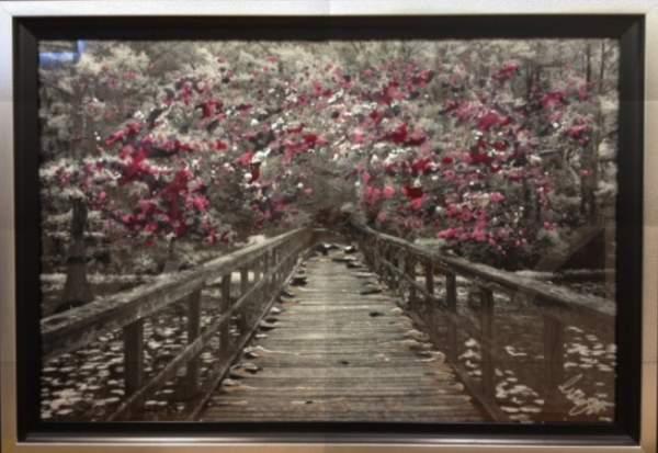 Cherry Blossom Framed wall art